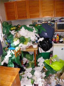 Nettoyage extrême, syndrôme de Diogène